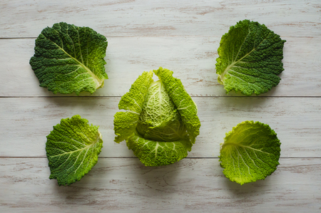 Freshly harvested cabbage. Fresh Savoy cabbage. Top view.