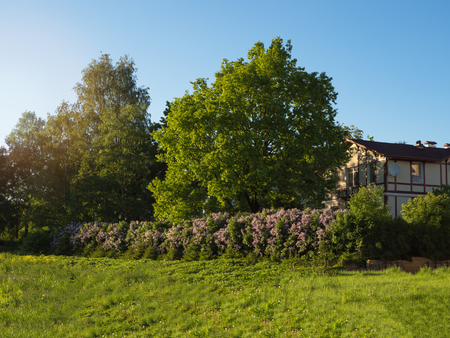 Ecological housing. Beautiful cottage in a green floral landscape.