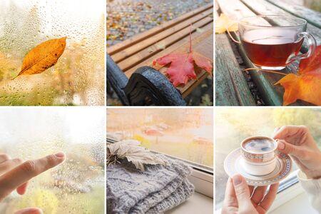 Rainy autumn collage. Collage with rainy views of autumn.