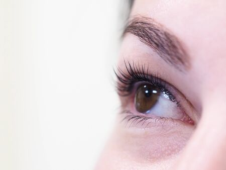 Kosmetisches Verfahren zur Pflege der Wimpern. Das Ergebnis des Färbens, Winkens und Laminierens von Wimpern.
