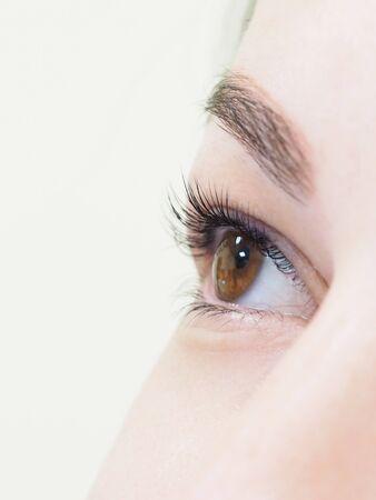 Procedura cosmetica per la cura delle ciglia. Il risultato della tintura, dell'ondulazione e della laminazione delle ciglia.
