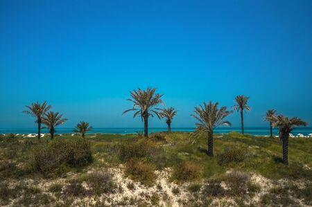 Abu Dhabi. Clean beach shoreline of the Arabian Gulf island of Saadiyat. Banco de Imagens