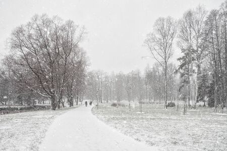 Winter landscape with a view of a snow-covered Park Archivio Fotografico - 137415838