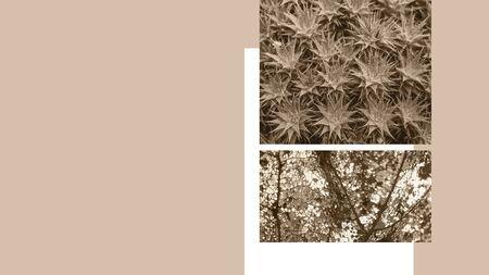 Floral vintage design poster. Vintage template for poster, banner, invitation, cover.