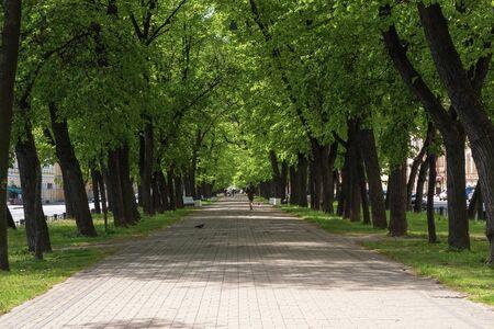 Wide shady pedestrian street in the city in summer. St. Petersburg.