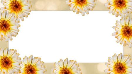 模糊的黄色背景上美丽的万寿菊花。节日鲜花的概念。花卡带花,抄写空格。