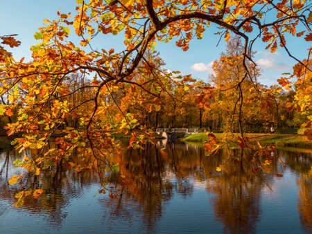 Autumn Park. Beautiful autumn landscape with an old stone bridge and a red tree branch over the lake. Alexander Park, Tsarskoe Selo. Russia. Standard-Bild - 157344882