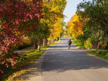 A cyclist rides alone on a rural autumn road Standard-Bild - 157290780