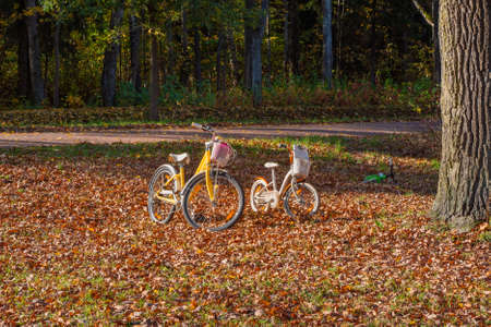 Two family bikes are parked in the autumn park Standard-Bild - 157290845