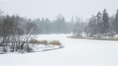 Atmospheric winter landscape. Frosty day on the lake. Standard-Bild - 157567362