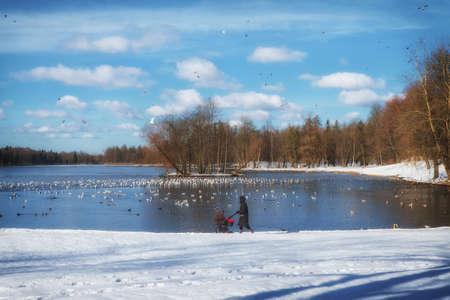 Silhouette of a mother with a baby carriage on the background of a lake in a winter Park. Standard-Bild