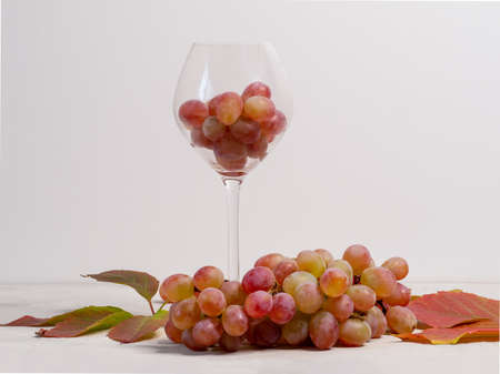 Glass filled with pink grapes and bunch of rpink grapes on the gray background
