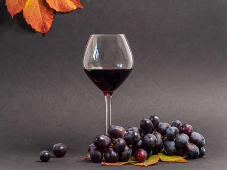 Glass of red wine and bunch of red grapes on the dark background Standard-Bild - 157612362