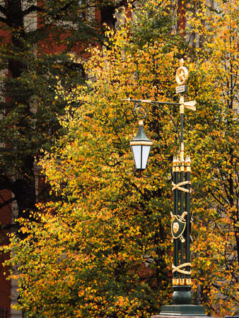 Lantern in the autumn city. Vintage lamp in the city park