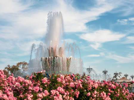 Flower bed and fountain against a blue sky. Soft focus. Exhibition of achievements of the national economy of VDNH. Moscow.
