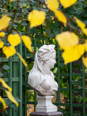 Marble statue surrounded by autumn foliage. Saint-Petersburg