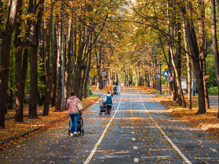 Autumn alley with walking moms with baby strollers. Moscow.
