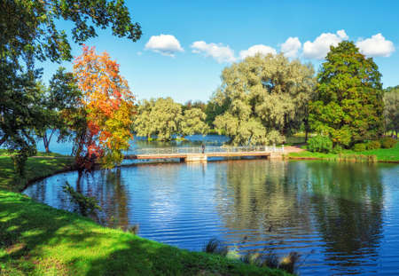 Bright autumn landscape with a red tree on the lake in the park. Gatchina. Russia. Standard-Bild