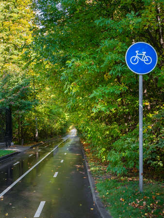 Bicycle path in the autumn park. White markings on the asphalt for bicyclists
