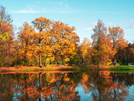 Autumn embankment along the lake in the city park with bright golden trees, walking people and reflections in the water. Tsarskoe Selo. Russia.