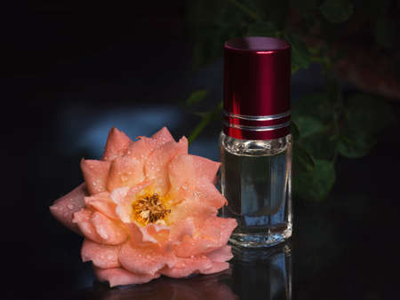 Concentrated perfume in a mini bottle with pink scented tea rose on the black background