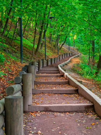Empty green ecological path in autumn, bottom-up view. Moscow, Vorobyovy Gory. 版權商用圖片