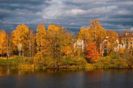Beautiful sunny autumn coastal landscape on the lake. A rich mansion behind golden autumn trees