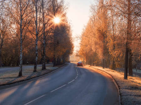 Sunny autumn road. Turn on the paved road. The street of the city in autumn sunny frosty day. Cars on autumn street. Soft focus. Фото со стока