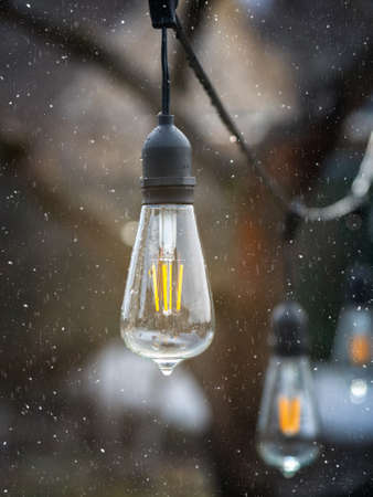 Vintage Edison type incandescent lamps outdoors in a snowfall. Vertical view.