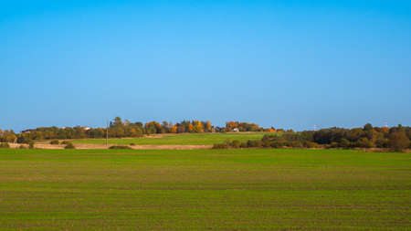 Panoramic view of green grass on slope with blue sky.