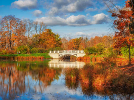 Picturesque autumn landscape with a pond. Beautiful autumn landscape with old stone bridge, red trees and reflection on the lake. Alexander Park, Tsarskoe Selo. Russia.