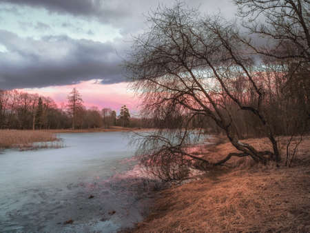 Picturesque autumn landscape with a pond. Evening spring sunset landscape with tree and ice on the lake.