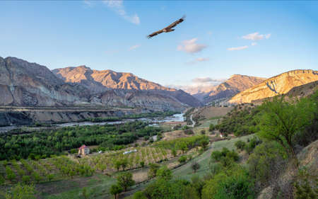 Mountain valley with a river. Panorama of the evening view of the Avar Koysu river in Dagestan. Russia. Standard-Bild