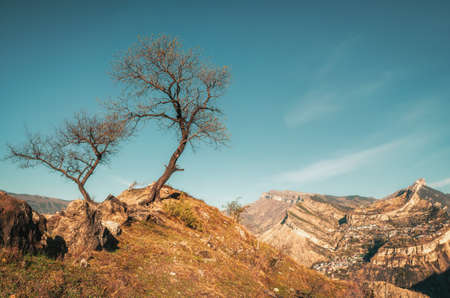 High-altitude plateau with a small field, complex agriculture, natural attractions, sharp mountains in Dagestan