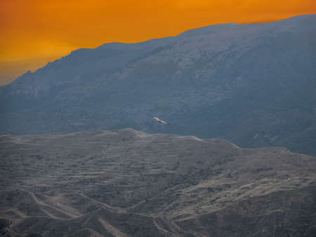 Blurred background, soft focus. Lonely eagle flying on the yellow sky over the high mountains. Фото со стока