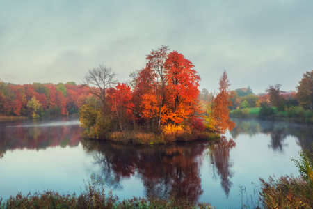 Soft focus. Autumn forest on an island in the middle of a pond in the morning fog. Mystical morning autumn landscape with fog over the lake.