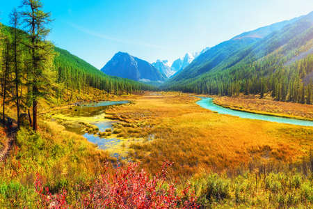 Atmospheric autumn landscape with swamp and river in mountains. Path along the swamp. Beautiful alpine landscape with azure water in fast river. Power majestic nature of highlands. Altai Mountains. Stock Photo