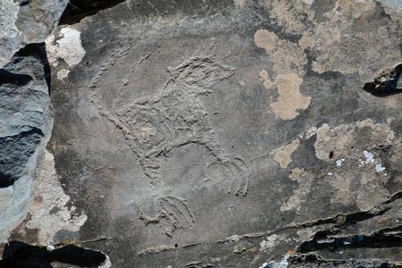 altai: squirrel - ancient petroglyphs in the Altai Stock Photo