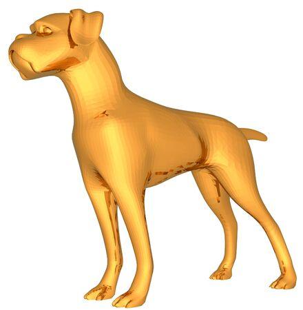 boxer dog: boxer dog gold