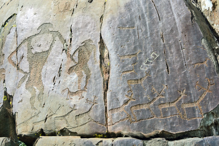 ancient petroglyphs found on the site Kalbak-Tash in the Altai Mountains