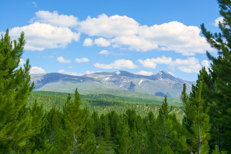 forest mountains pass Ulaganskiy. Altai, Siberia Russia