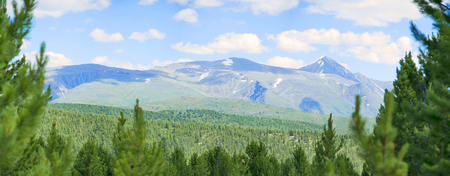 forest mountains pass Ulaganskiy. Altai, Siberia Russia. Panorama big size Stock Photo