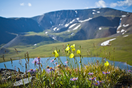 Beautifull valley with view to mountains and  clear lake in Altaj, Russia  at the summer