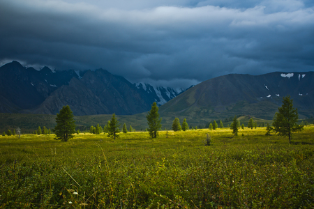 Beautifull  view to snow mountains and green field with sunlight and sky  in Altaj, Russia  at the summer storm Reklamní fotografie