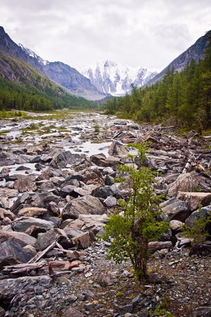 Beautifull  valley with view to mountains and river in Altaj, Russia  at the summer Reklamní fotografie