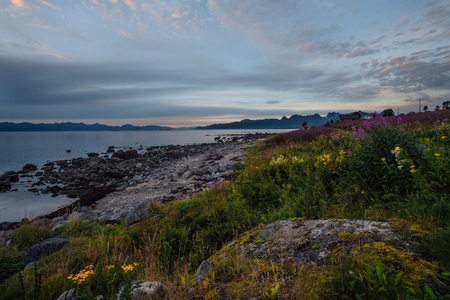 Road, stones and flowers near shore of the lake with view to mountains in the Norway at summer sunset with clouds at  low tide