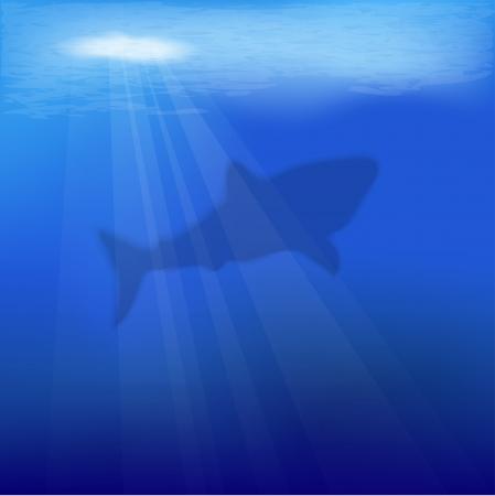 vector underwater scene with shark Stock Vector - 17011904