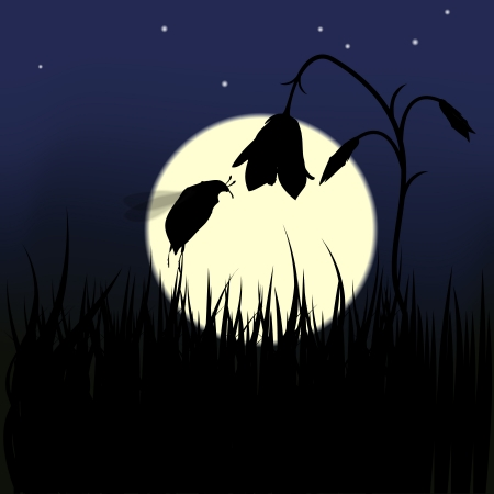 Bug and flower against the moon, vector illustration Stock Vector - 17216020