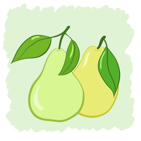 two pears with leaves, a vector illustration Stock Vector - 17216010