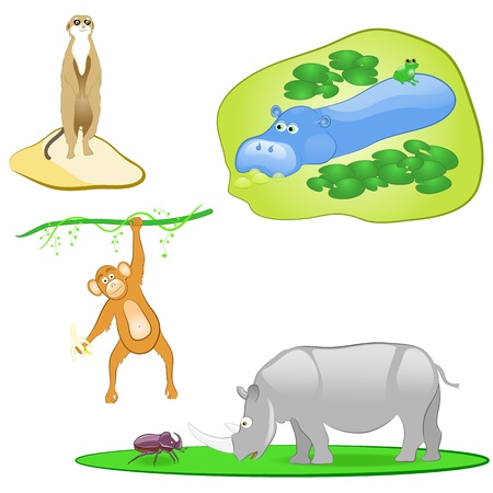 illustration of isolated wild animals set on white background Vector